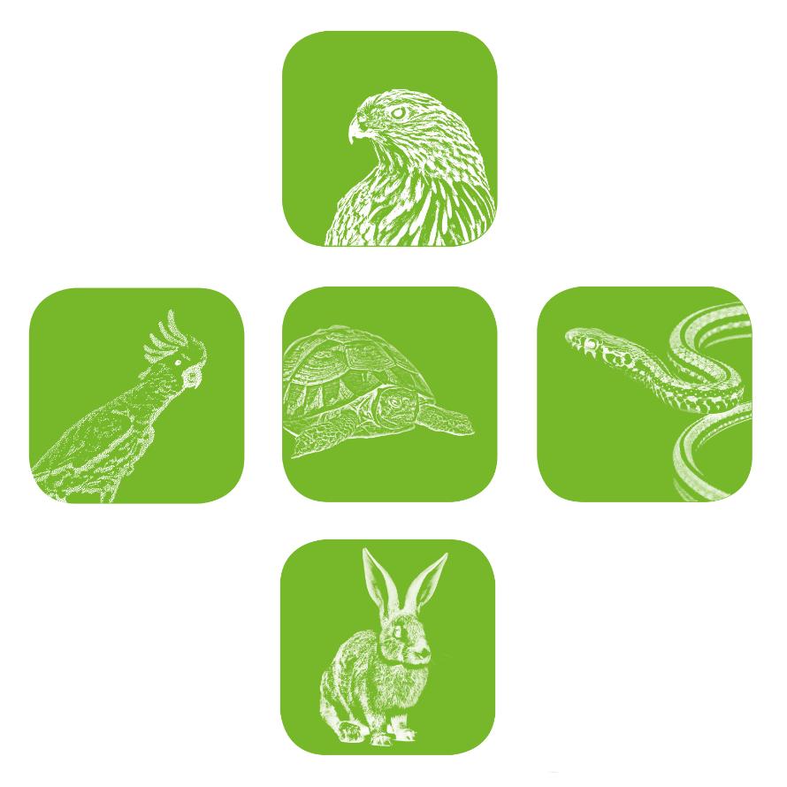 Egzotikus Állatgyógyász Szakorvosok Társasága